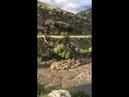 Аварское Кайсу в селе Карадах