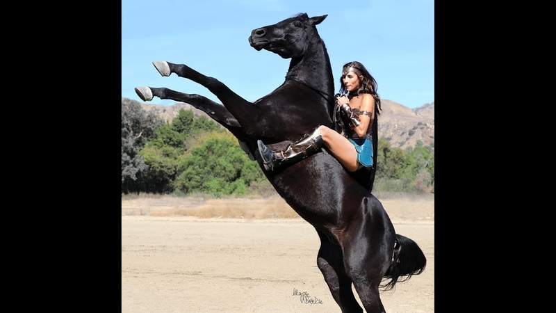 Blue Rose Equestrian Halloween Wonder Woman Performance