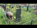 Фарида ухаживает за могилкой Бабушки