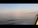 Карское море 🌊