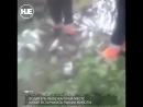 На Сахалине перевернулся грузовик с 10 тоннами рыбы