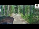 Мото путешествия по России с Рус Мото Тревел