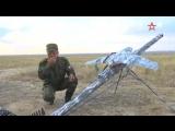 Показать все, что скрыто: финал конкурса «Соколиная охота» проходит в Казахстане