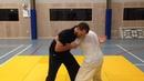 Tai Chi Chuan Push Hands Dragon Wrestling Cascade Throw