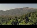 Дикая природа Германии 11 Баварский лес Познавательный животные 2012