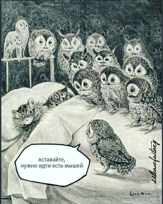 fmiAEEsIlU8 - Пожалуй, только коты спасут этот мир