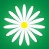 Megaflowers — доставка цветов по всему миру