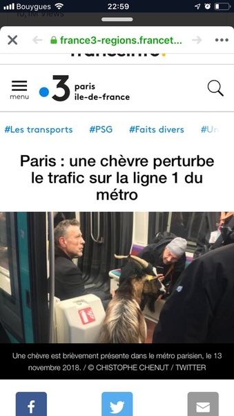 Мужчина с украденной козой вызвал коллапс в метро Парижа. В Париже пришлось частично приостановить движение поездов метро из-за упрямого пассажира с козой, сообщает 13 ноября The Independent.Как