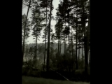 _headphones__black_heart__notes_ Good night Триумфальная арка (Эрих Мария Ремарк), ( 937 X 750 ).mp4