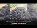 Студенты из Татарстана сбежали от голода и нечеловеческих условий с практики в Крыму