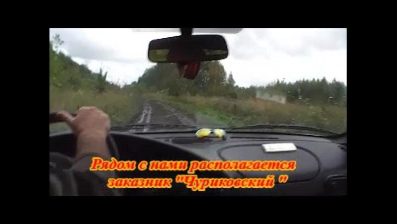 Наедине с природой Гвоздкова Галина, 11 класс МОУ Чапаевская СОШ
