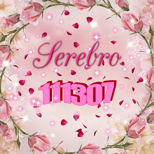 SEREBRO альбом 111307