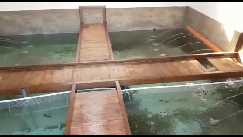 Резервуары с родниковой водой