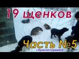 М.Репортер за 10.01.18
