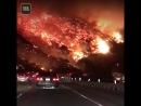 «Не самая типичная дорога на работу». Пожары в Южной Калифорнии