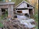 В Смоленской области волонтеры спасли собак погибающих на привязи в вонючем сарае
