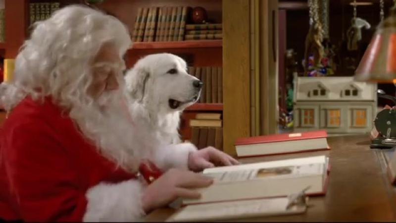 Chien Noel Va Venir Nous Voir - Les copains fêtent Noël