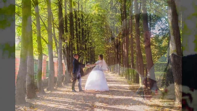 Наш незабываемый день❤🥂💏🎊 Разины21092018 Свадьба Счастливые Любите другдруга