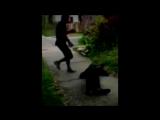 ТЕЛО ▶ [JEEMBO - KONSTRUKT] (Больше видео на vk.com/dynastysamurai)