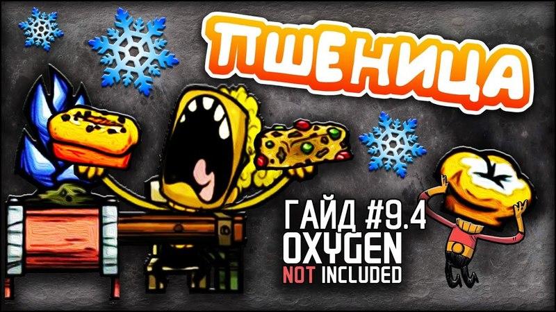 Oxygen not included - Морозная Пшеница Приготовление - Гайд 9.4