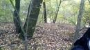 15.10.2018 Хортиця, нижній край острова -5
