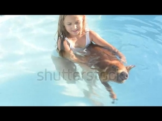 stock-footage-young-girl-in-bathing-suit-is-swimming-in-clear-blue-water-of-pool-with-red-pig-of-duroc-breed