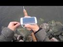 Deeper Smart Fishfinder. Тест эхолота на Финском заливе