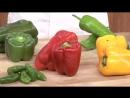 1 09 Fruto variedades estacionalidad usos
