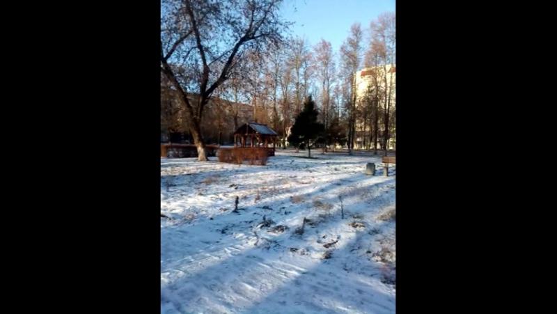 Зима в ОВКГ1586 . 12:20 дня среда