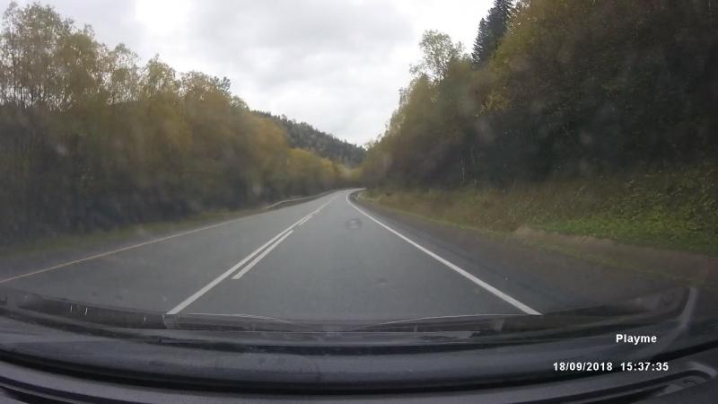 встретил медвежонка на дороге. Смотреть до конца