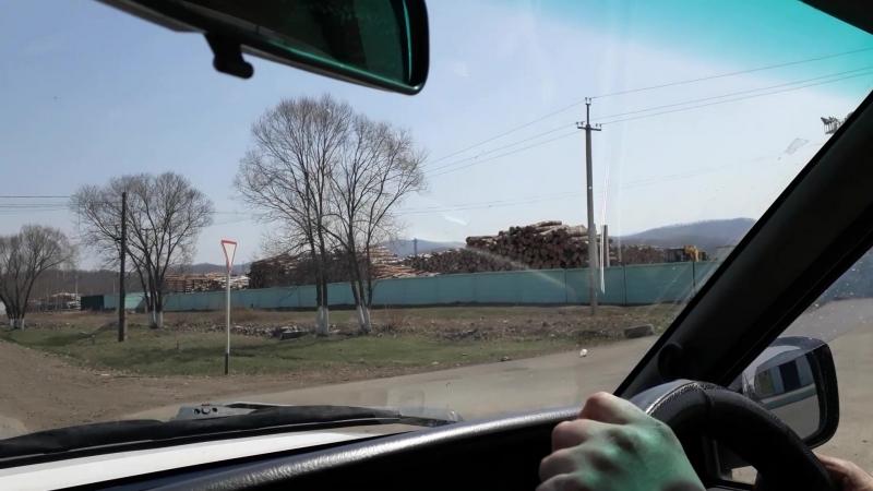 Склад древесины. Приморский край, Чугуевка