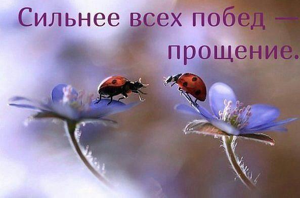 Фото -90334891