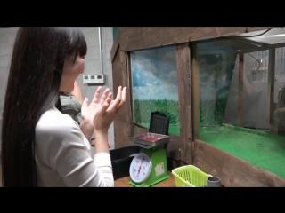 Perfume PTA Vol. 10 - PTA Movie