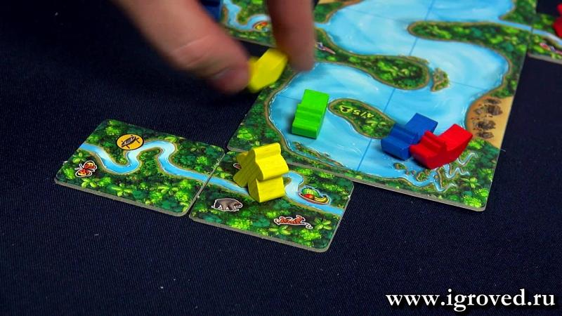 Каркассон: Амазонка. Обзор настольной игры от Игроведа.