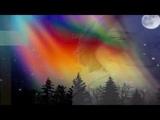 Como o vai e vem da Aurora Boreal, o amor