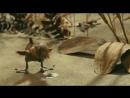 Гадкий утёнок, реж. Гарри Бардин, на музыку П.И.Чайковского