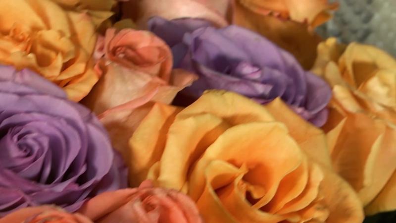 Лучезарный букет из эквадорских роз