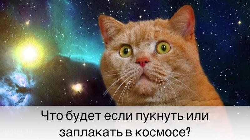 ЧТО БУДЕТ ЕСЛИ ПУКНУТЬ или заплакать в космосе