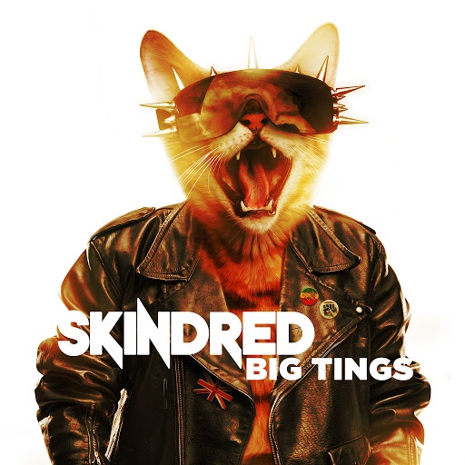 Skindred альбом Big Tings