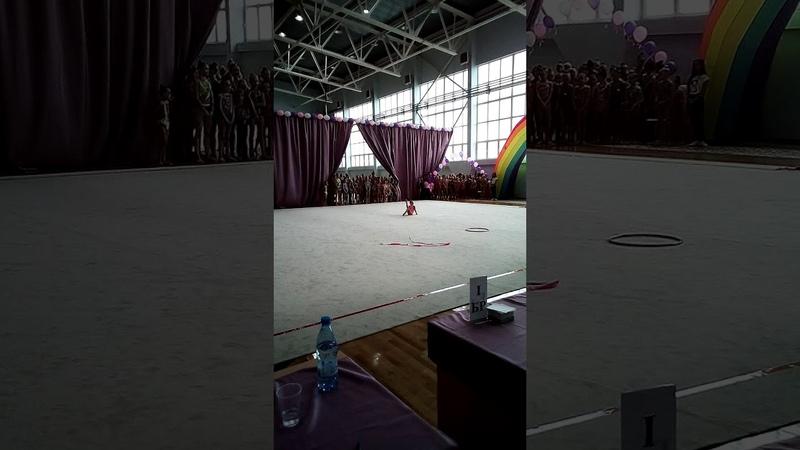Кубок ОФСОО Авангард по худ гимнастике 11 15 мая Липецк