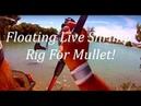 Live Shrimp Rig For Mullet