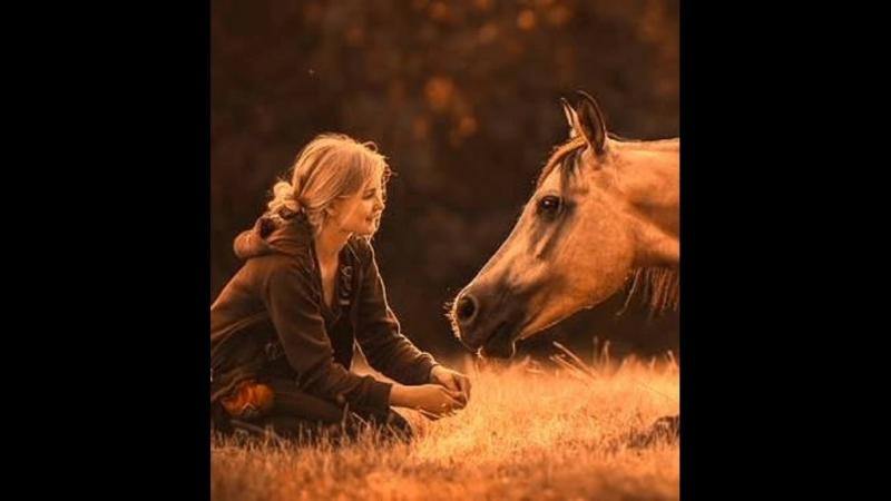 Только мы с конём по полю идём...