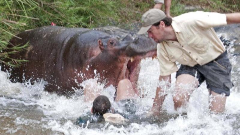 Бурунди и Руанда. Ловим бегемотов в озере Танганьика. Геноцид в Руанде. Опасная Африка