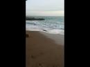 зимнее море юбк