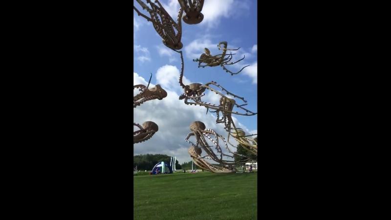 Воздушные осьминоги