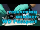 How to recover data on WD Passport drive