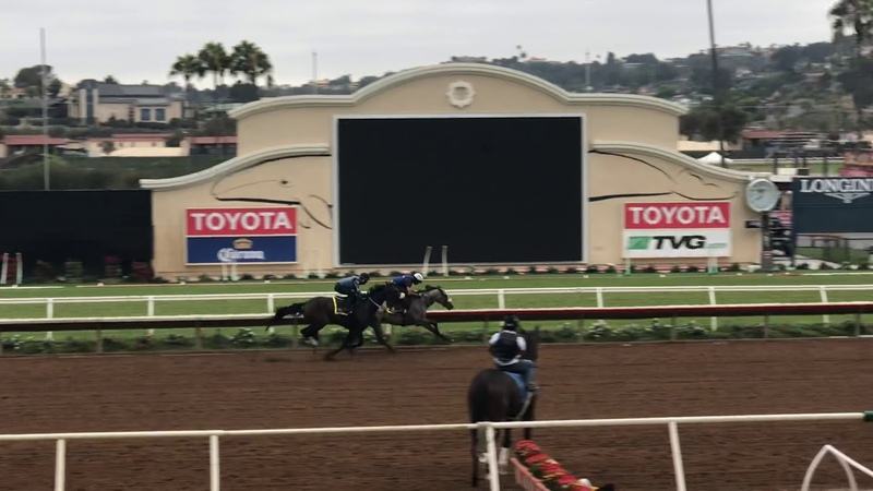 Giza Goddess (inside horse) Karmically (outside horse) 81518 Del Mar