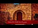 Надир абу Халид| Саид ибн Амир