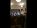 Дарья Позднякова Live