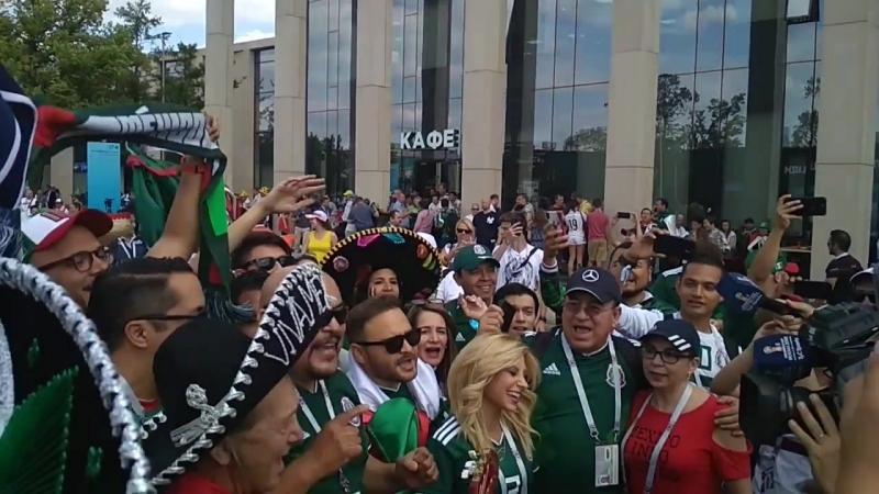 Лужники, перед матчем Германия-Мексика